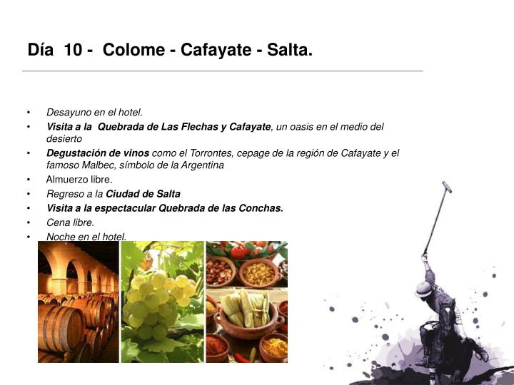 Día  10 -  Colome - Cafayate - Salta.