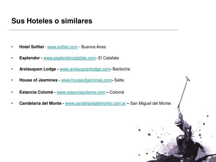 Sus Hoteles o similares