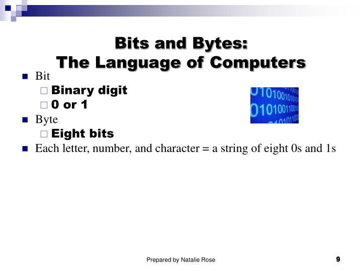 Bits and Bytes: