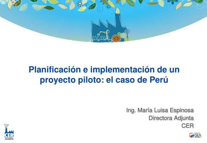 Planificación e implementación de un proyecto piloto: el caso de Perú
