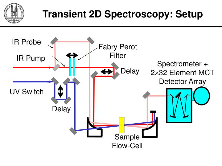 Transient 2D Spectroscopy: Setup