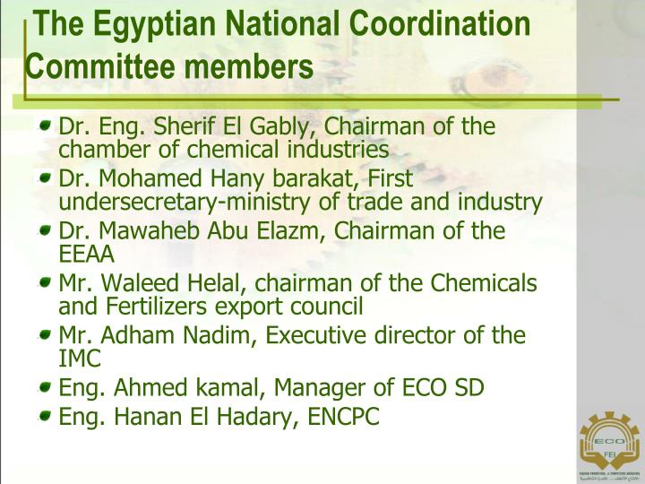 The Egyptian National Coordination Committee members