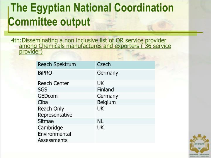 The Egyptian National Coordination Committee output