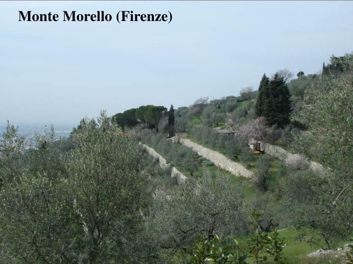 Monte Morello (Firenze)