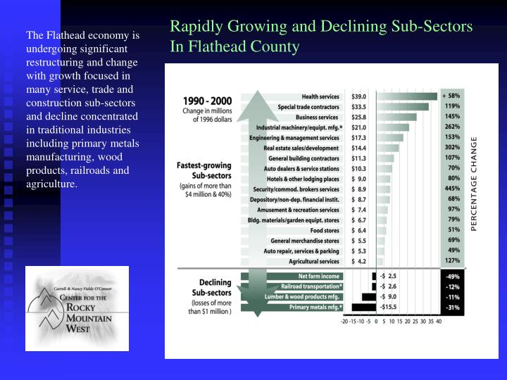 Rapidly Growing and Declining Sub-Sectors