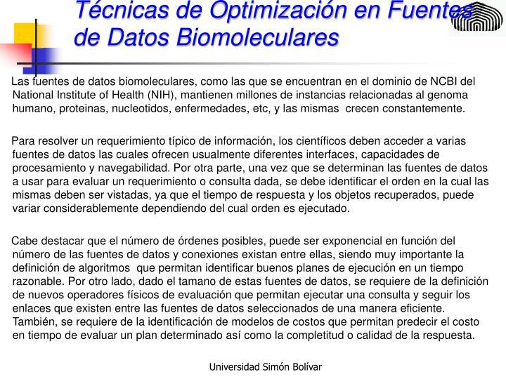 Técnicas de Optimización en Fuentes