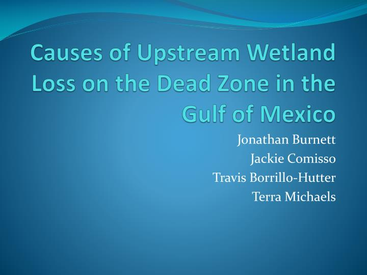 Causes of Upstream Wetland Loss on the Dead Zone in the Gulf of Mexico