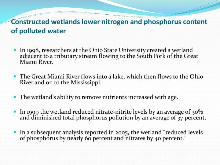 Constructed wetlands lower nitrogen and phosphorus content of polluted water