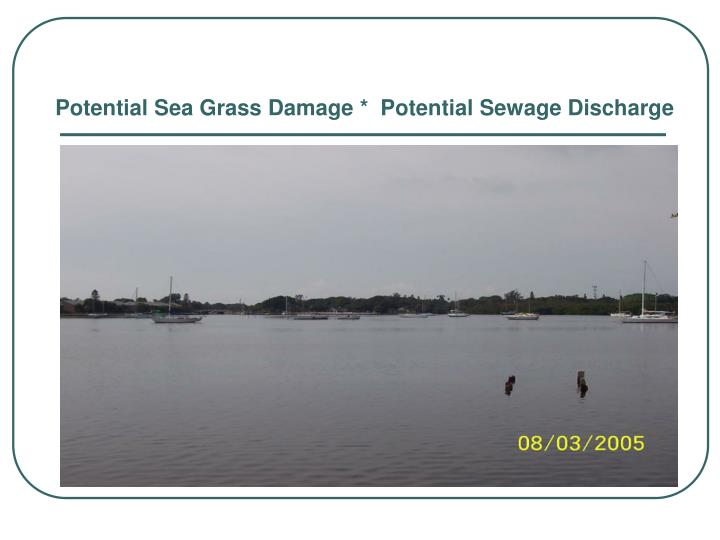Potential Sea Grass Damage *  Potential Sewage Discharge