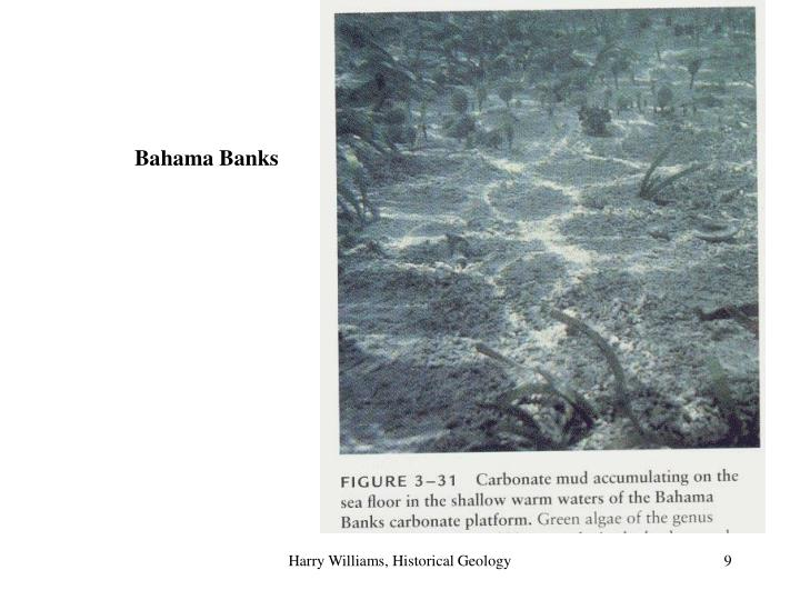Bahama Banks
