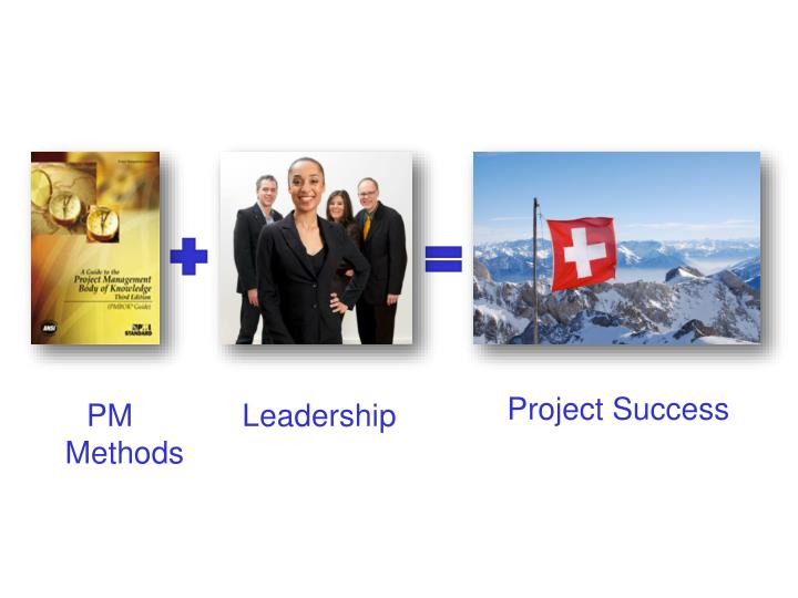 Project Success