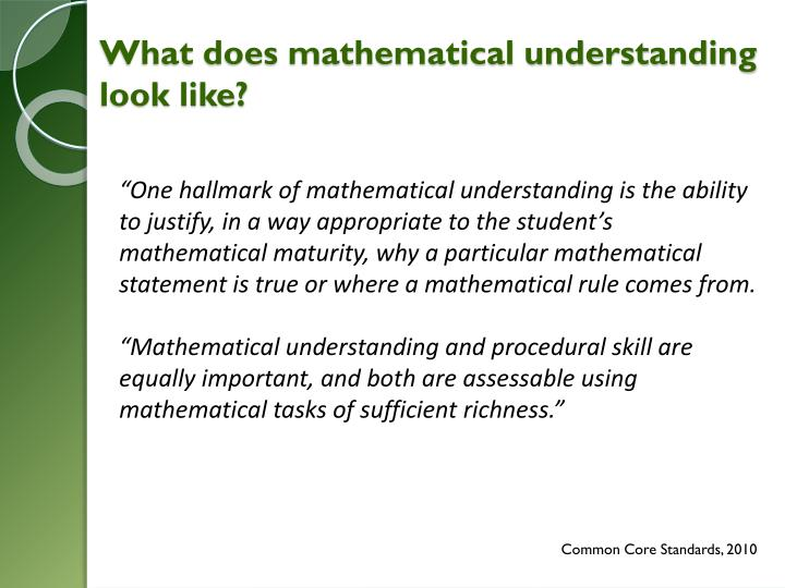 What does mathematical understanding look like?