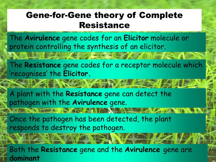 Gene-for-Gene theory of Complete Resistance
