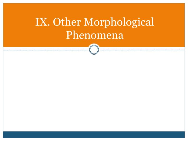 IX. Other Morphological Phenomena