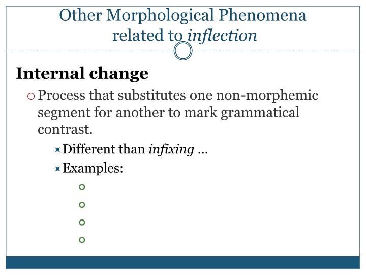 Other Morphological Phenomena