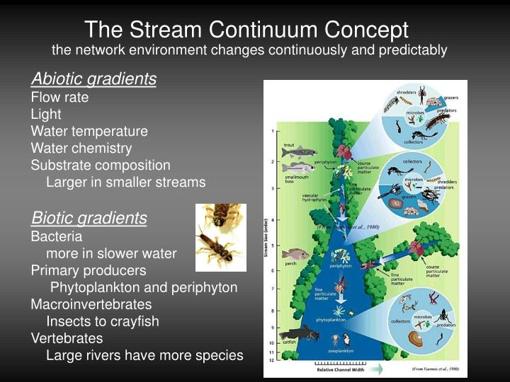 The Stream Continuum Concept