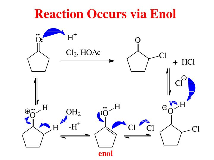 Reaction Occurs via Enol