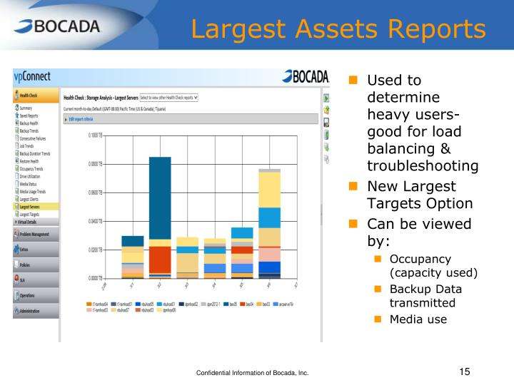 Largest Assets Reports