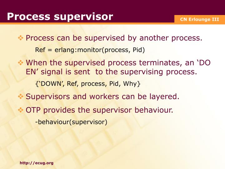 Process supervisor