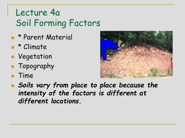 Ppt lecture 4a soil forming factors powerpoint for Soil forming factors