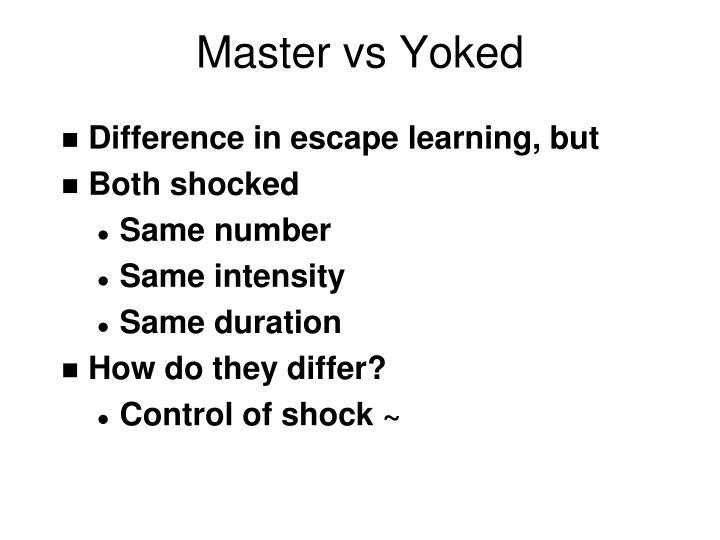 Master vs Yoked