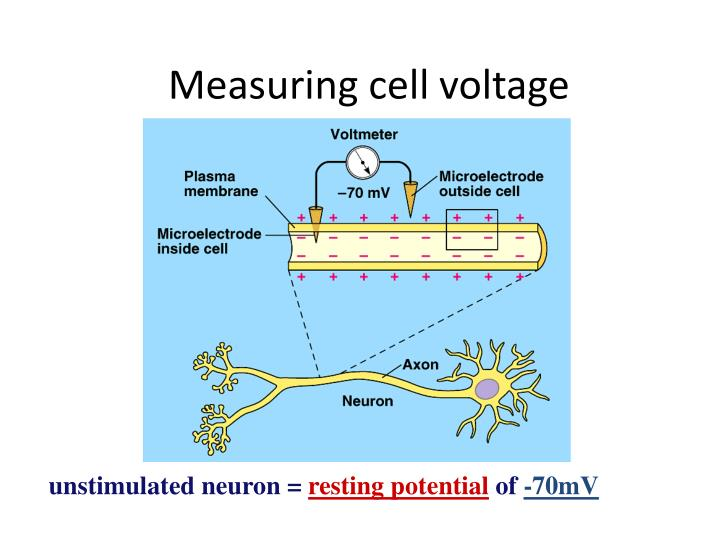 Measuring cell voltage