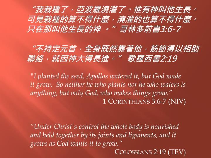 """""""我栽種了,亞波羅澆灌了。惟有神叫他生長。可見栽種的算不得什麼,澆灌的也算不得什麼。只在那叫他生長的神 。"""