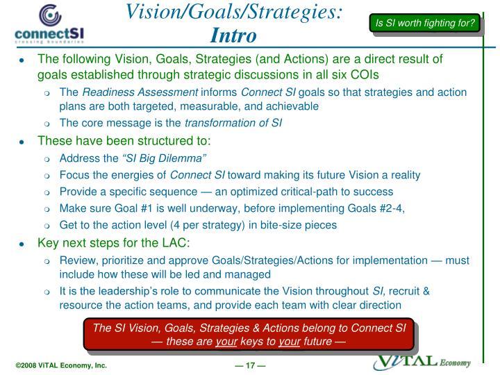Vision/Goals/Strategies: