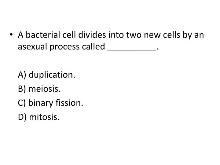 A bacterial cell divides into two new cells by an asexual process called __________.