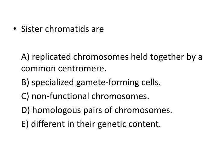 Sister chromatids are
