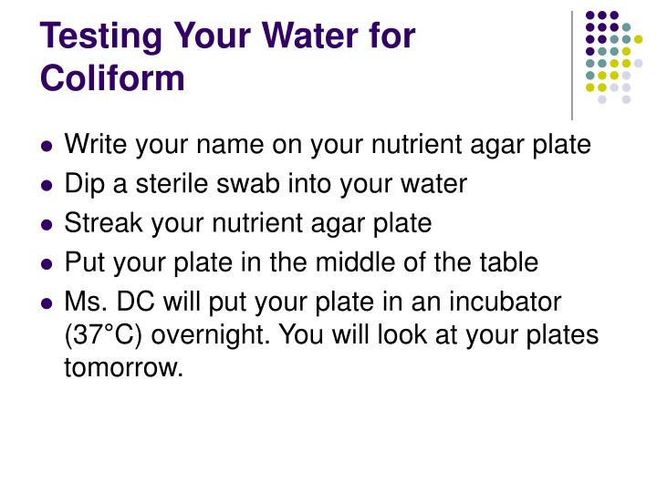 Testing Your Water for Coliform