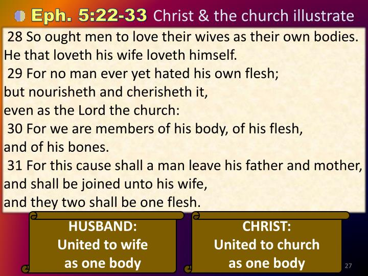 28 So ought men to love their wives as their own bodies. He that