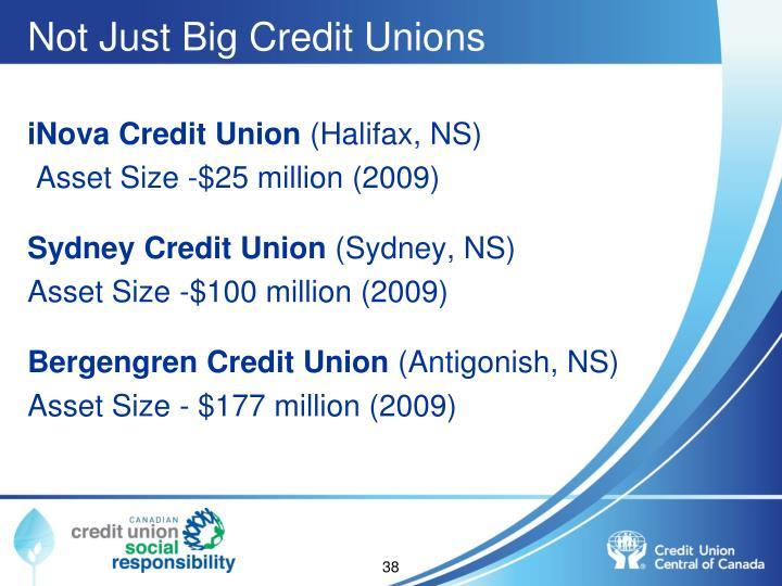 Not Just Big Credit Unions