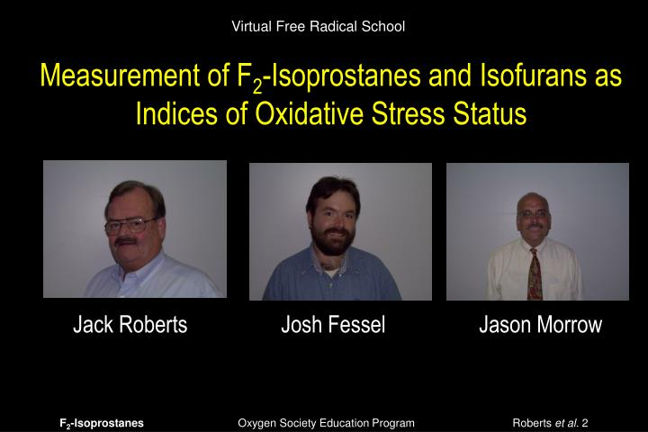 Virtual Free Radical School
