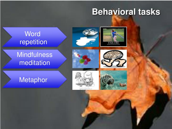 Behavioral tasks