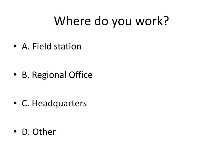 Where do you work