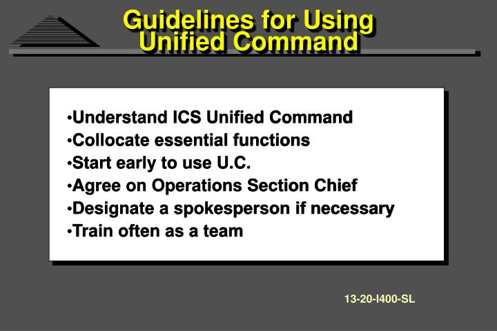 Guidelines for Using Unified Command