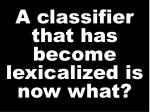 a classifier that has become lexicalized is now what