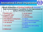 international labour organization10