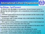 international labour organization12