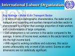 international labour organization14