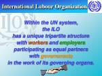 international labour organization19