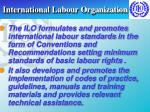 international labour organization20