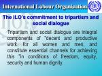 international labour organization22
