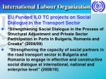 international labour organization28