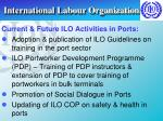 international labour organization30