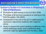 international labour organization31