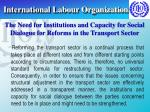 international labour organization7