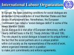 international labour organization9