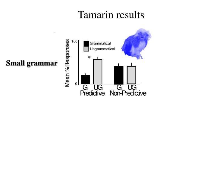 Tamarin results